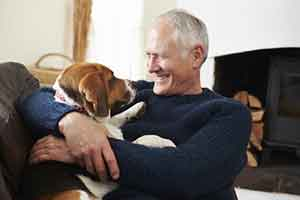 The Five Best Dogs for Seniors