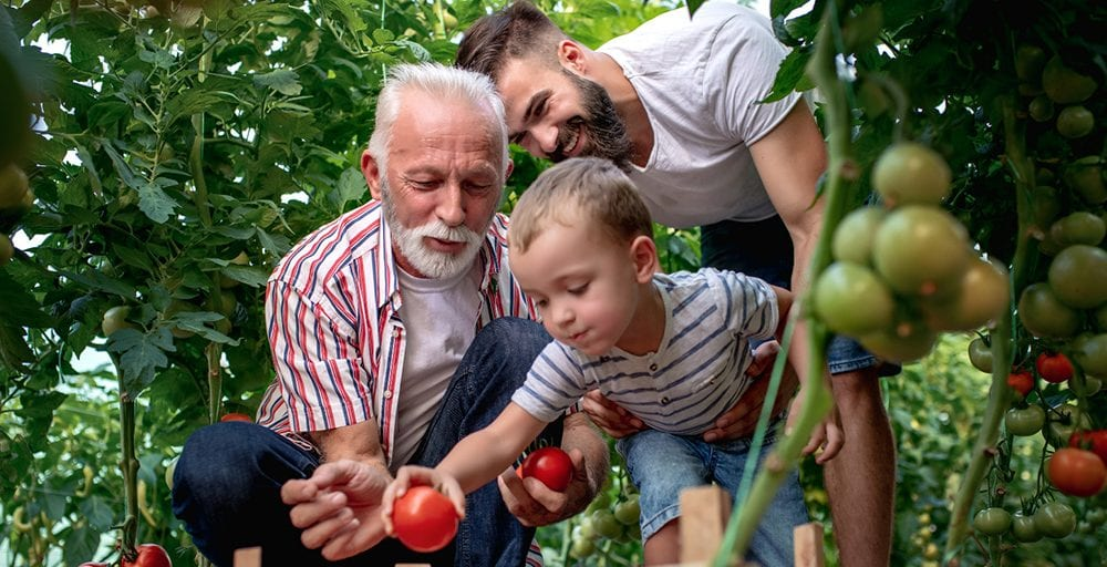 Father's Day Activities with Your Senior